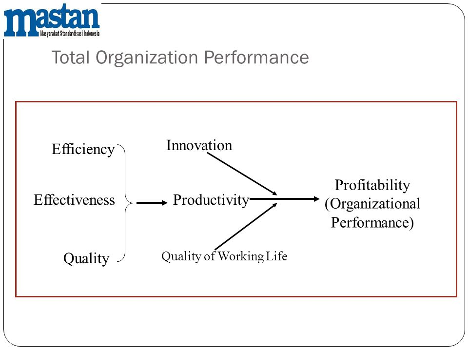 Total Organization Performance