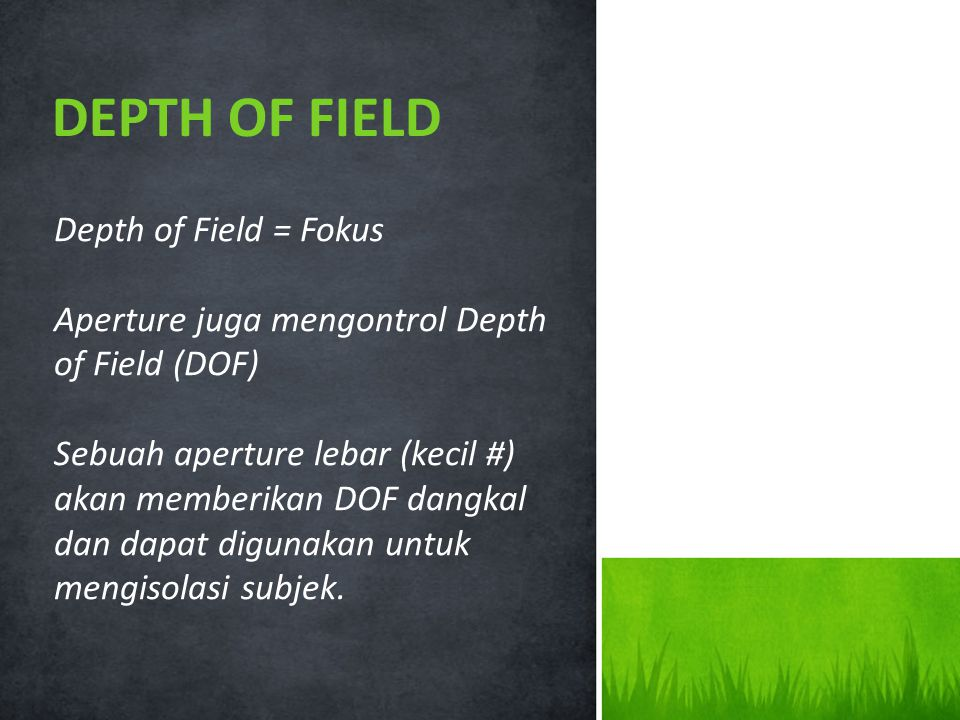 DEPTH OF FIELD Depth of Field = Fokus