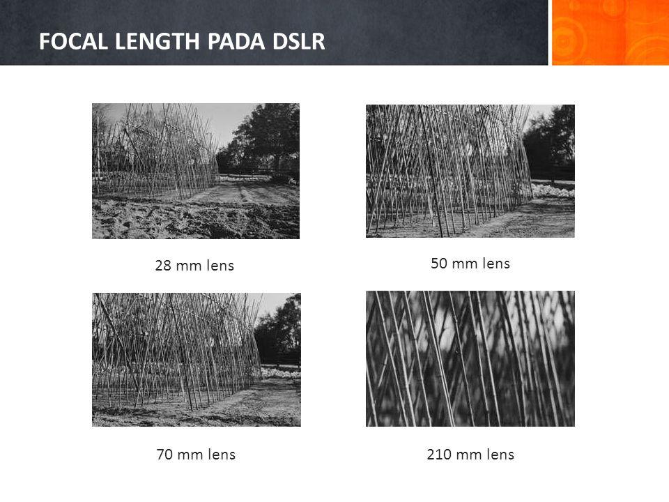 FOCAL LENGTH PADA DSLR 28 mm lens 50 mm lens 70 mm lens 210 mm lens