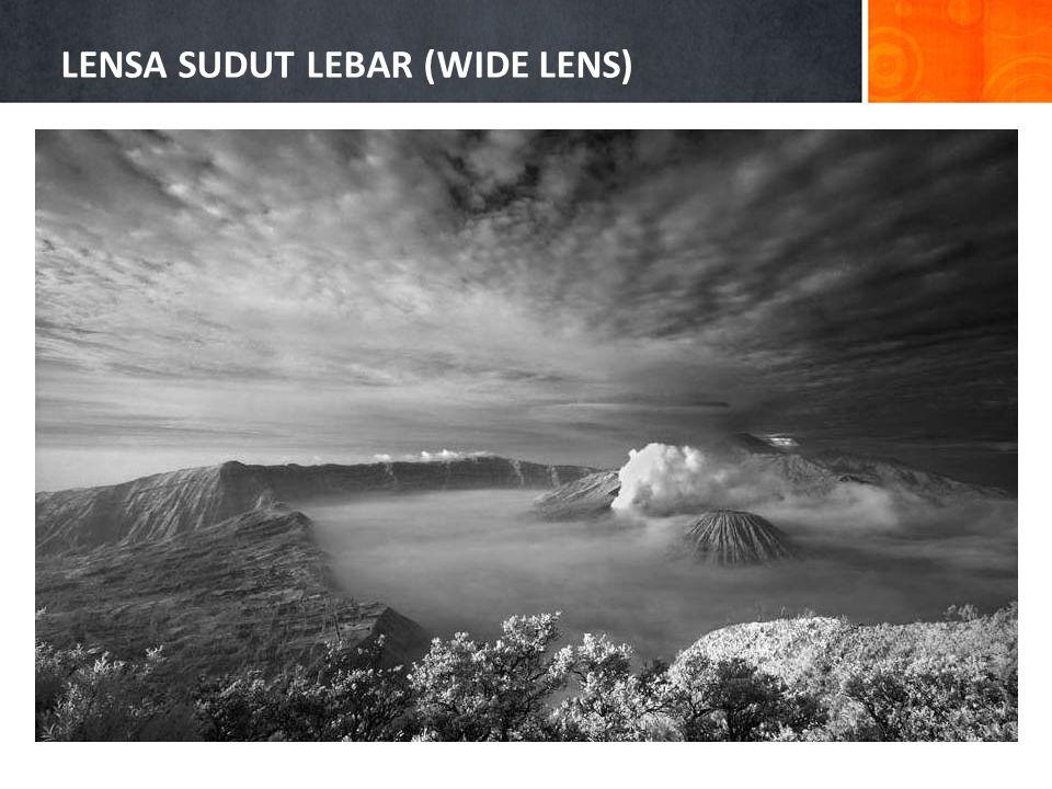 LENSA SUDUT LEBAR (WIDE LENS)