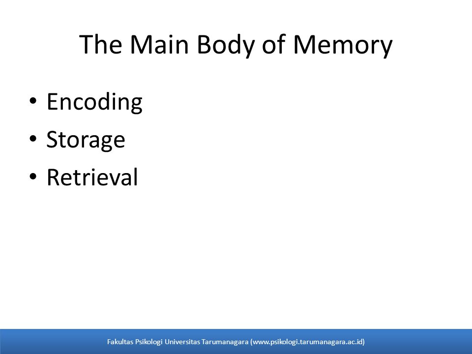 The Main Body of Memory Encoding Storage Retrieval