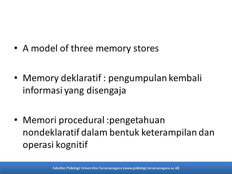A model of three memory stores