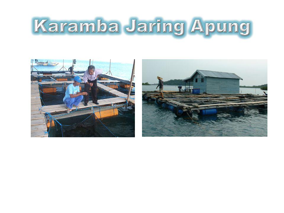 Karamba Jaring Apung