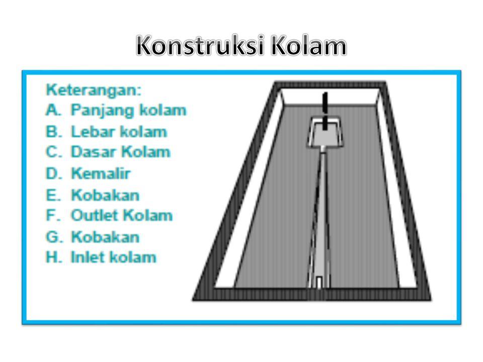 Konstruksi Kolam