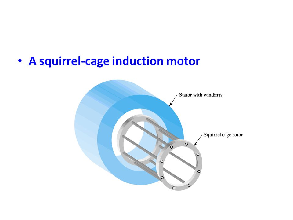 A squirrel-cage induction motor