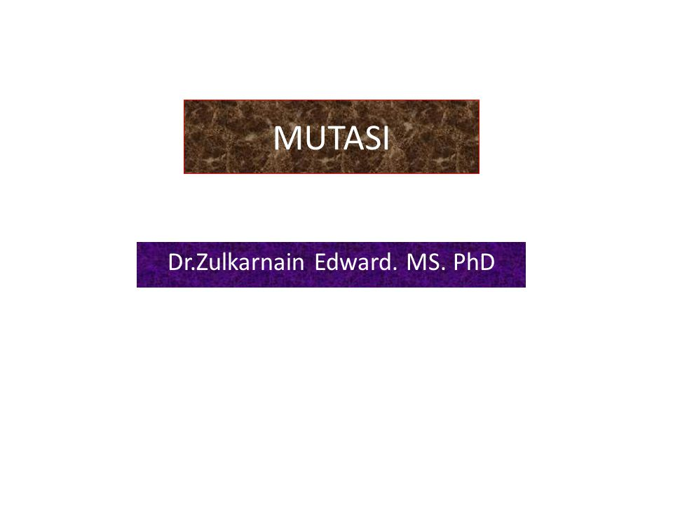 Dr.Zulkarnain Edward. MS. PhD