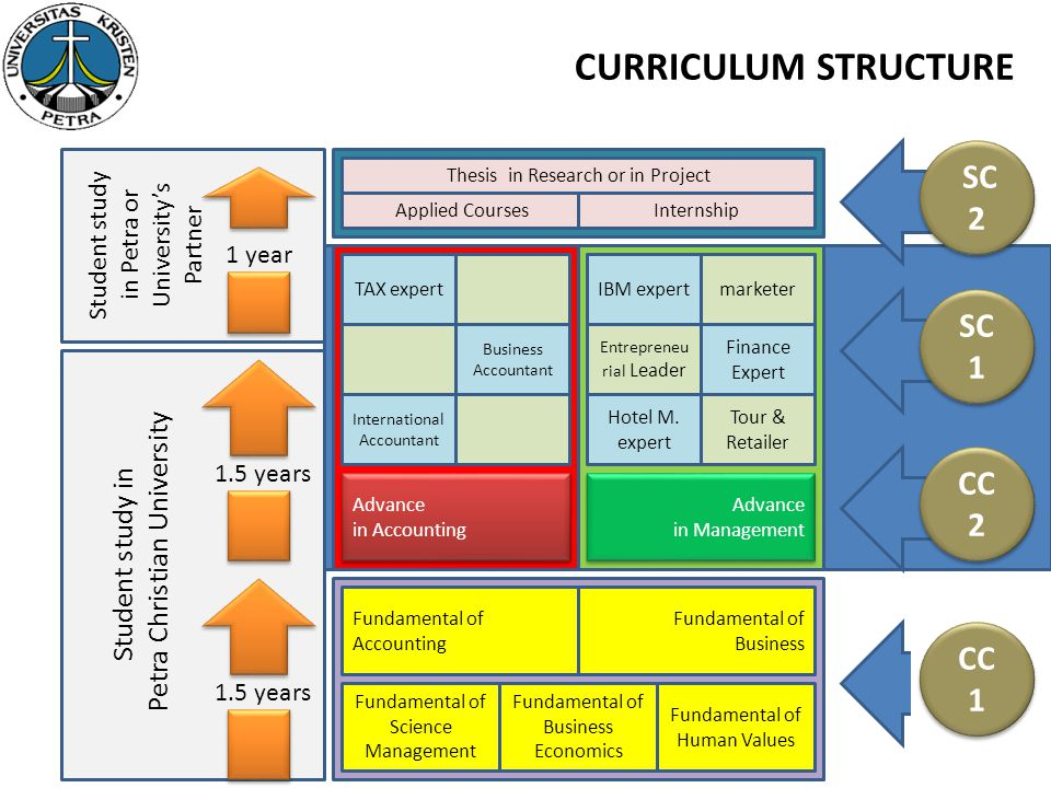 CURRICULUM STRUCTURE SC 2 SC 1 CC 2 CC 1 Petra Christian University