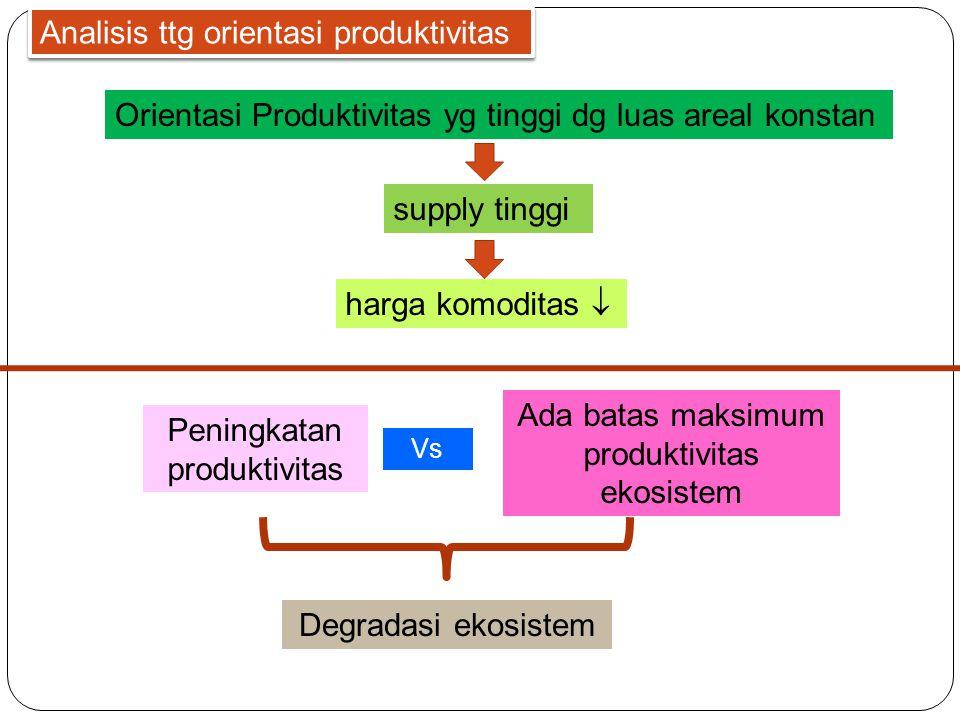 Analisis ttg orientasi produktivitas