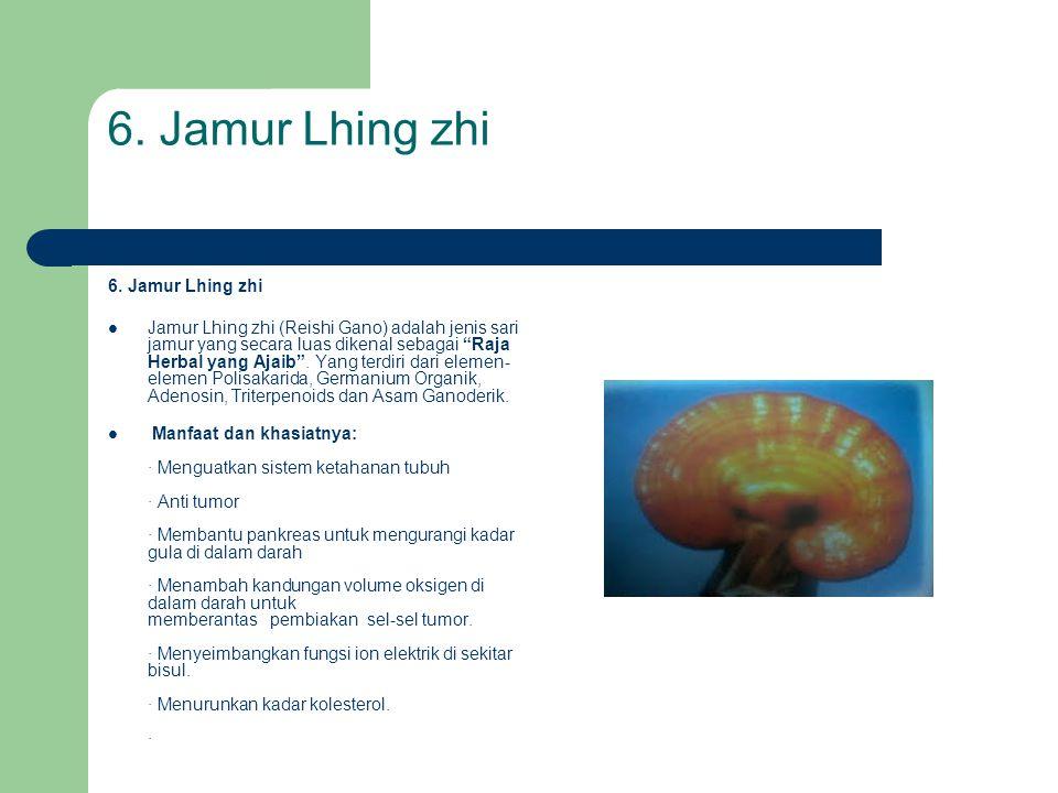 6. Jamur Lhing zhi 6. Jamur Lhing zhi
