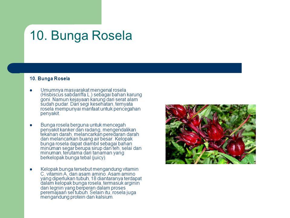 10. Bunga Rosela 10. Bunga Rosela
