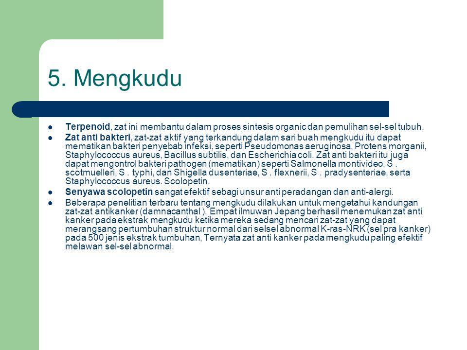 5. Mengkudu Terpenoid, zat ini membantu dalam proses sintesis organic dan pemulihan sel-sel tubuh.