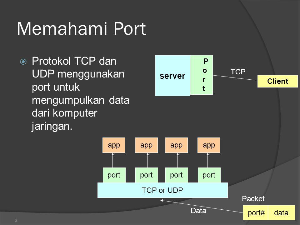 Memahami Port Protokol TCP dan UDP menggunakan port untuk mengumpulkan data dari komputer jaringan.