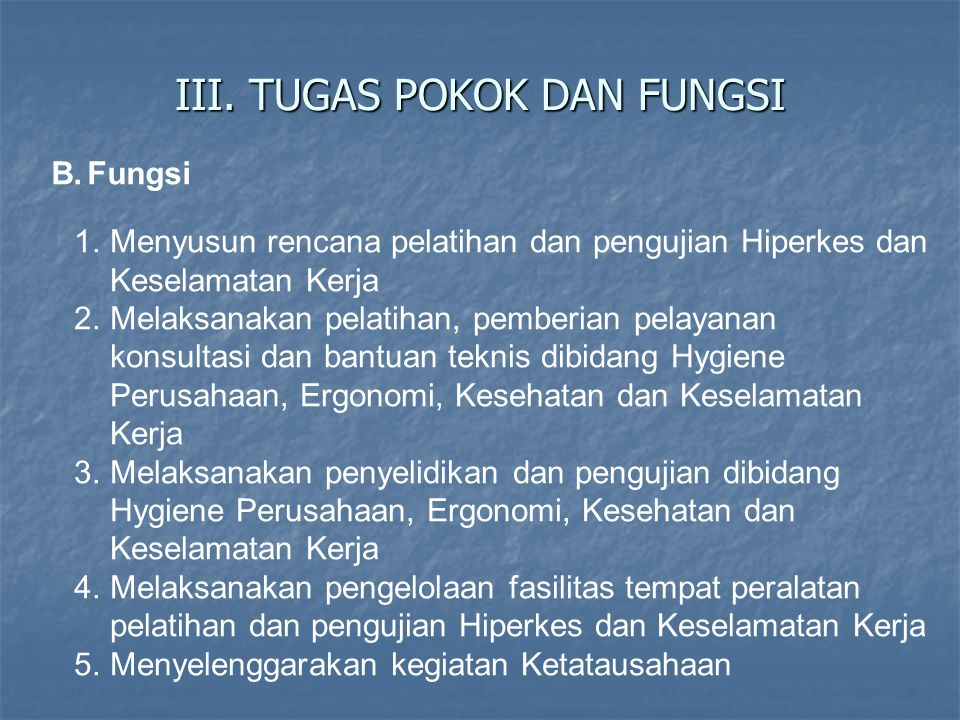 III. TUGAS POKOK DAN FUNGSI