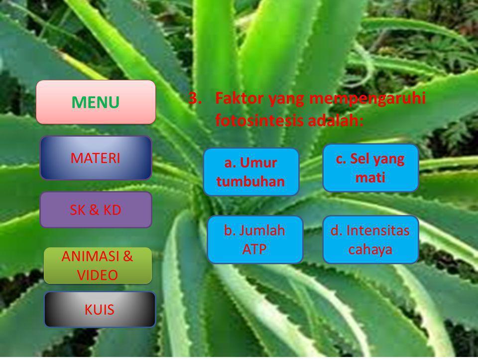 Faktor yang mempengaruhi fotosintesis adalah: