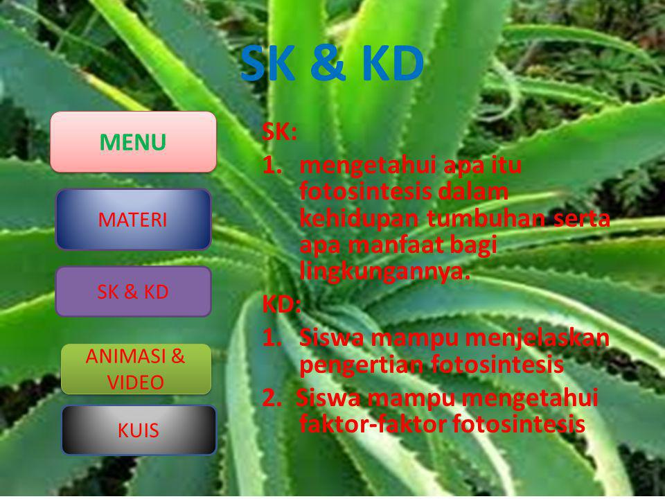 SK & KD SK: mengetahui apa itu fotosintesis dalam kehidupan tumbuhan serta apa manfaat bagi lingkungannya.