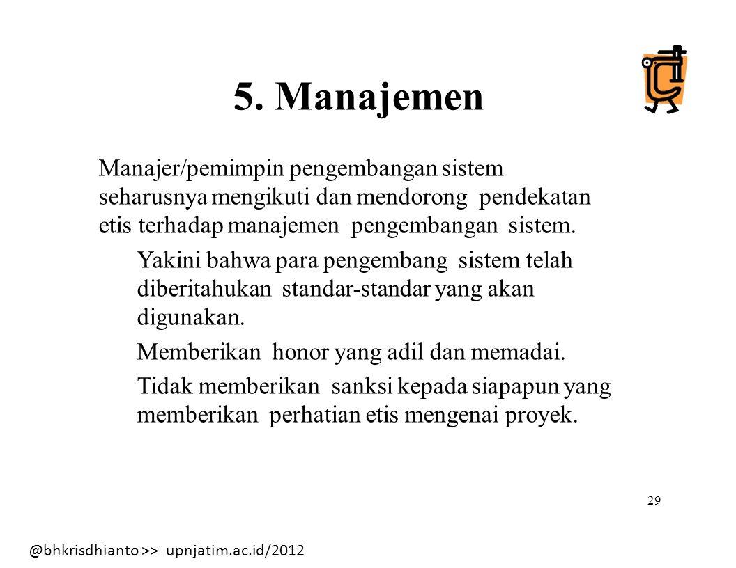 Manajer/pemimpin pengembangan sistem