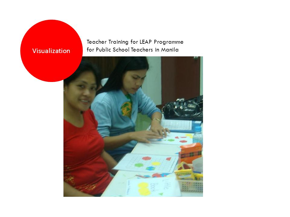 Visualization Teacher Training for LEAP Programme