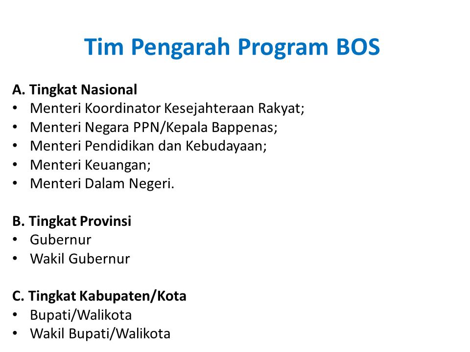 Tim Pengarah Program BOS