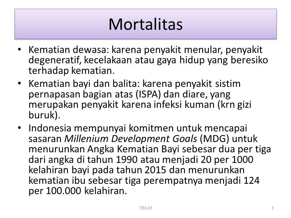 Mortalitas Kematian dewasa: karena penyakit menular, penyakit degeneratif, kecelakaan atau gaya hidup yang beresiko terhadap kematian.