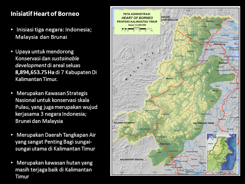 Inisiatif Heart of Borneo