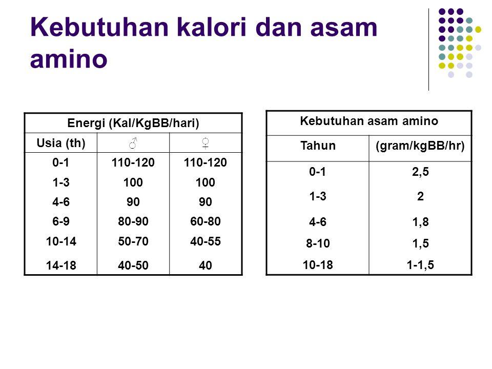 Kebutuhan kalori dan asam amino