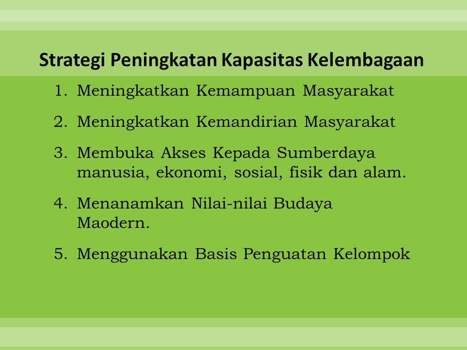 Strategi Peningkatan Kapasitas Kelembagaan