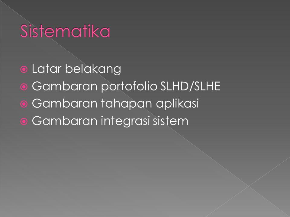 Sistematika Latar belakang Gambaran portofolio SLHD/SLHE