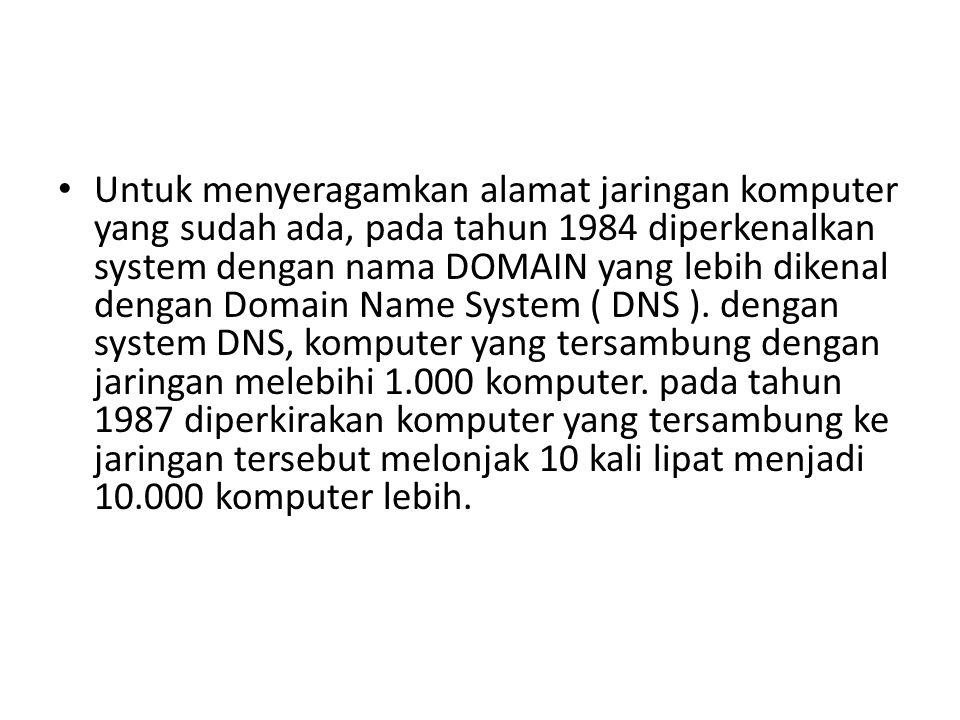 Untuk menyeragamkan alamat jaringan komputer yang sudah ada, pada tahun 1984 diperkenalkan system dengan nama DOMAIN yang lebih dikenal dengan Domain Name System ( DNS ).