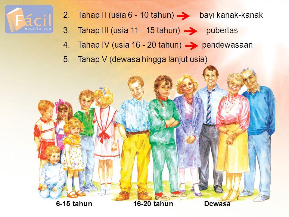 3. Tahap III (usia 11 - 15 tahun) pubertas