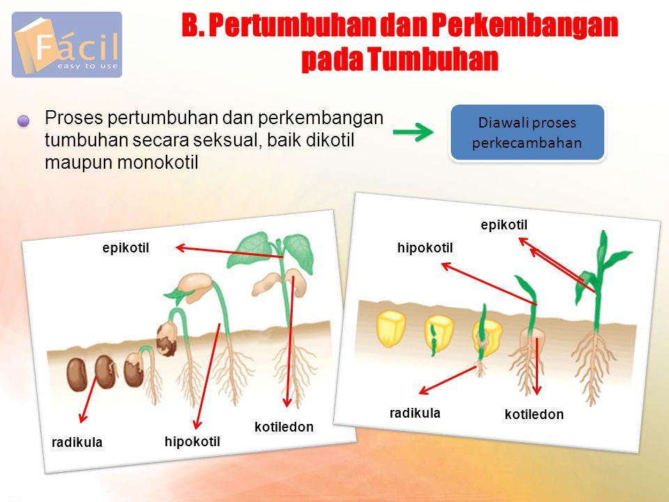 B. Pertumbuhan dan Perkembangan pada Tumbuhan