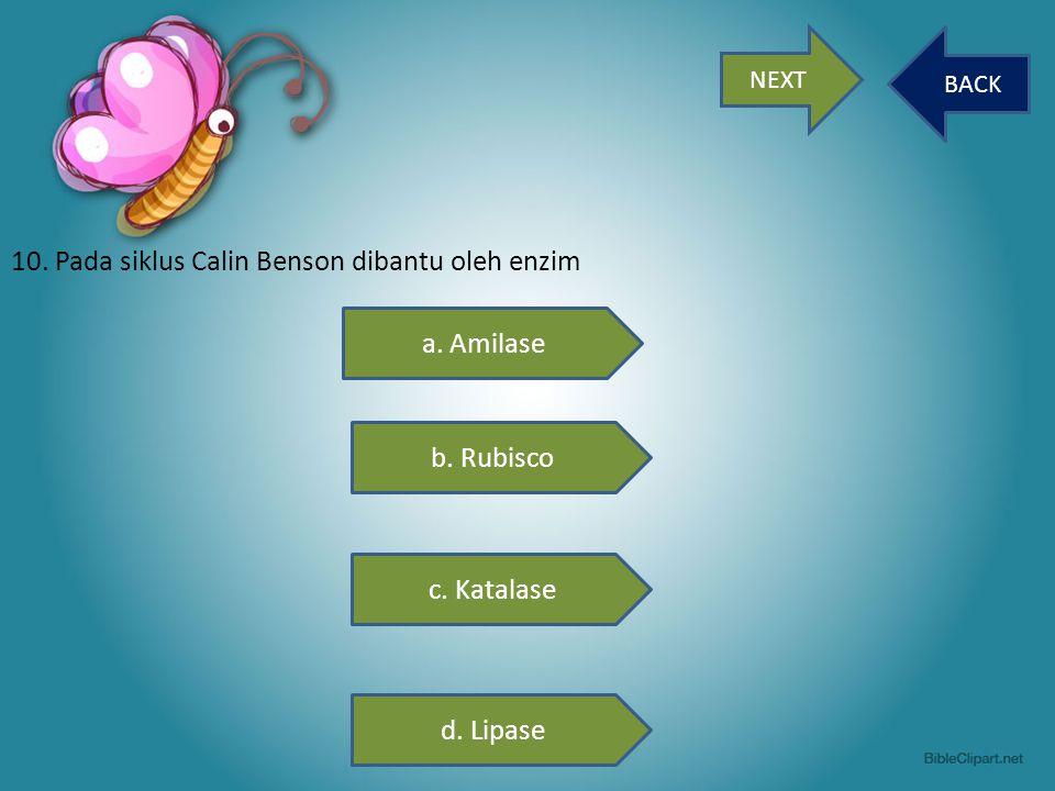 10. Pada siklus Calin Benson dibantu oleh enzim