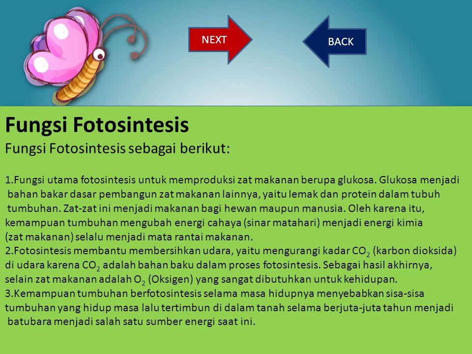 Fungsi Fotosintesis Fungsi Fotosintesis sebagai berikut: NEXT BACK