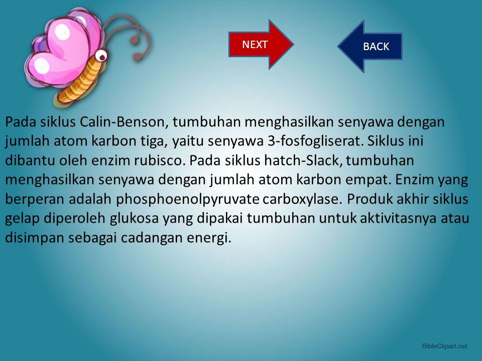 Pada siklus Calin-Benson, tumbuhan menghasilkan senyawa dengan