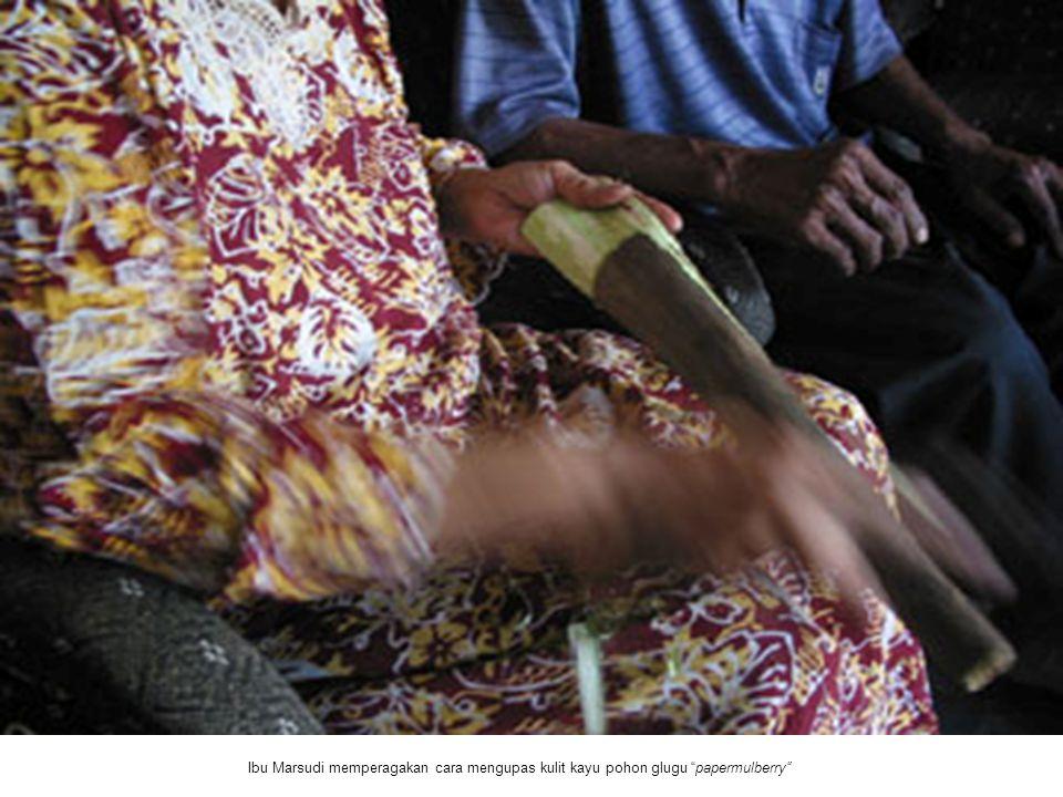Ibu Marsudi memperagakan cara mengupas kulit kayu pohon glugu papermulberry