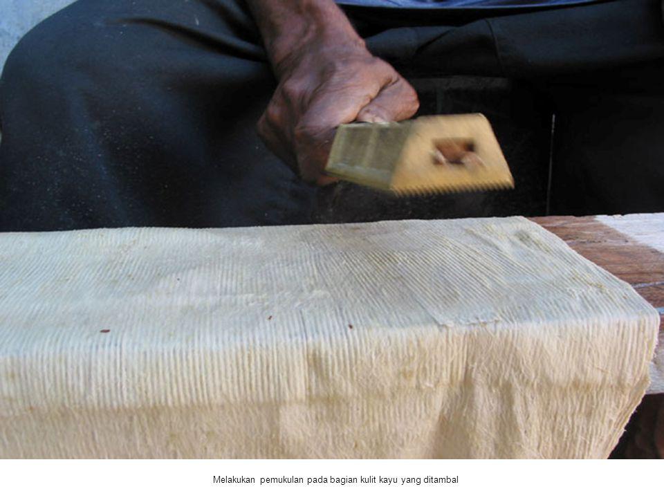 Melakukan pemukulan pada bagian kulit kayu yang ditambal