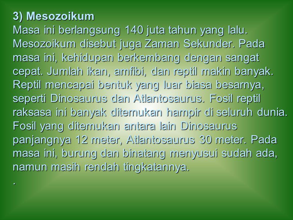 3) Mesozoikum Masa ini berlangsung 140 juta tahun yang lalu