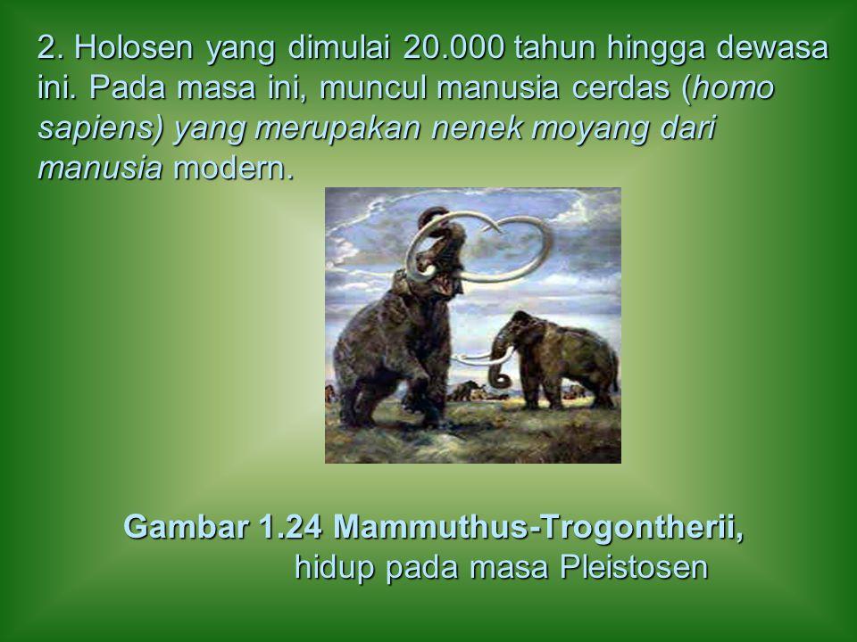 2. Holosen yang dimulai 20. 000 tahun hingga dewasa ini