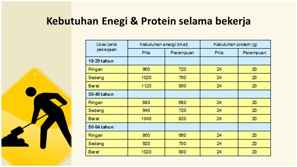 Kebutuhan Enegi & Protein selama bekerja