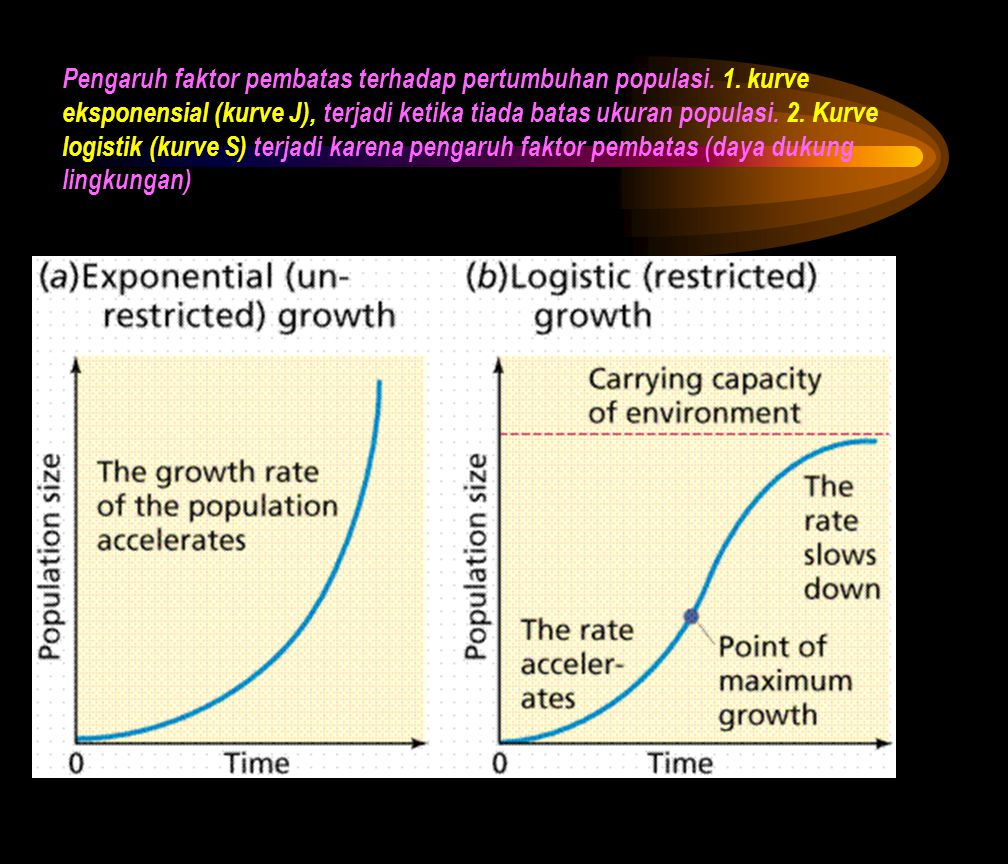 Pengaruh faktor pembatas terhadap pertumbuhan populasi. 1