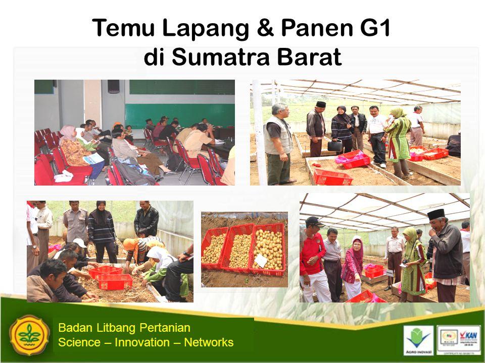 Temu Lapang & Panen G1 di Sumatra Barat
