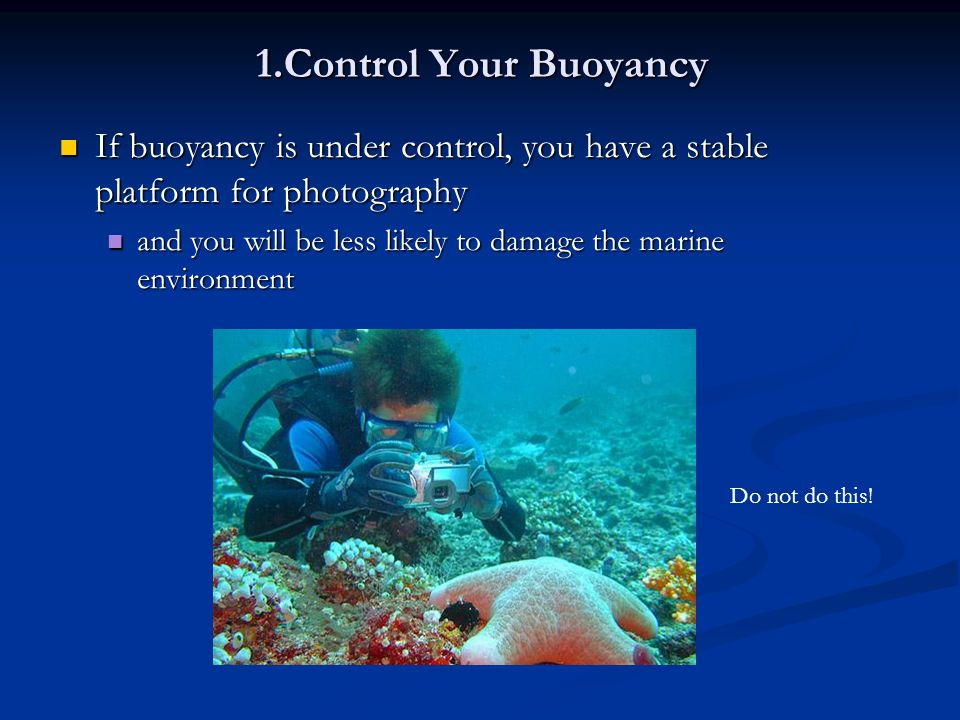 1.Control Your Buoyancy If buoyancy is under control, you have a stable platform for photography.