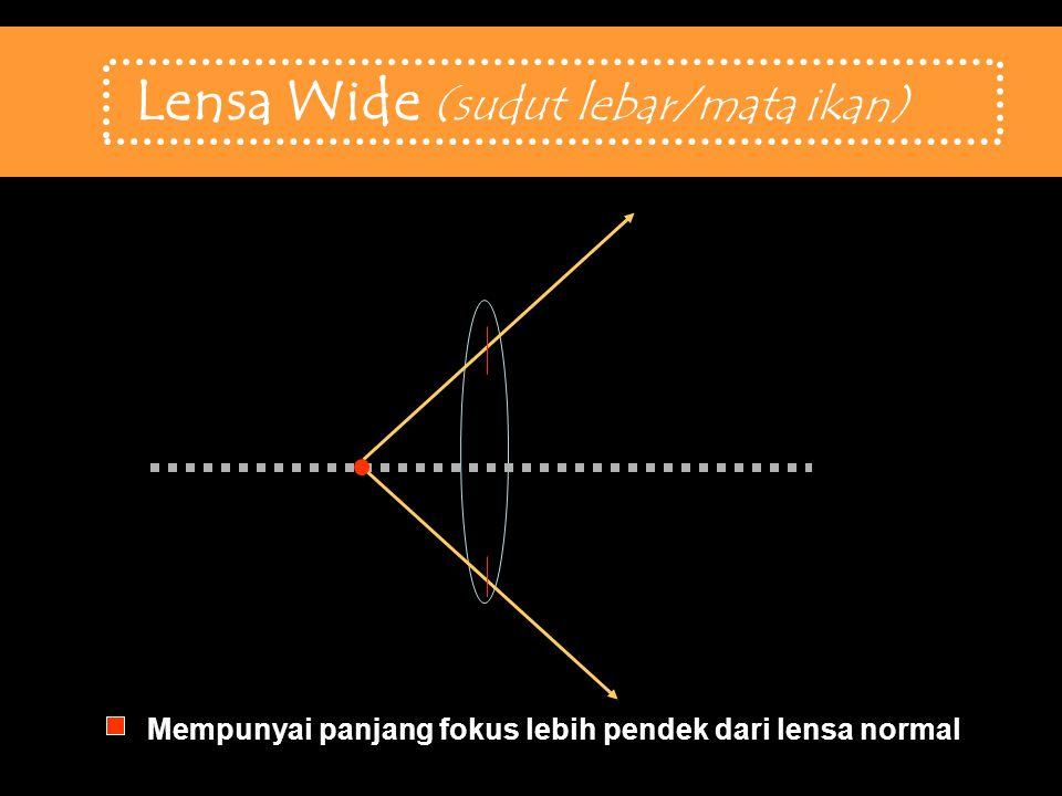Lensa Wide (sudut lebar/mata ikan)