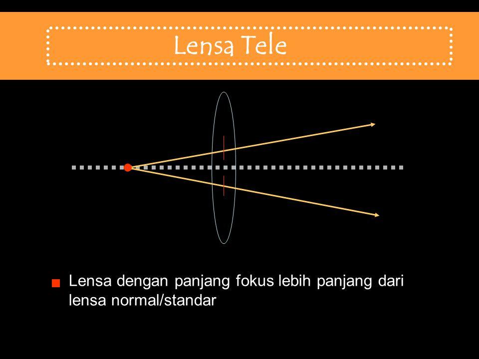 Lensa Tele Lensa Tele Lensa dengan panjang fokus lebih panjang dari lensa normal/standar