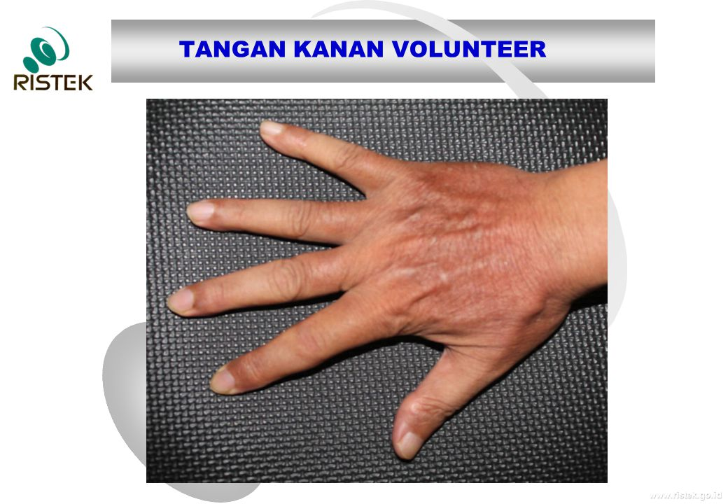 TANGAN KANAN VOLUNTEER