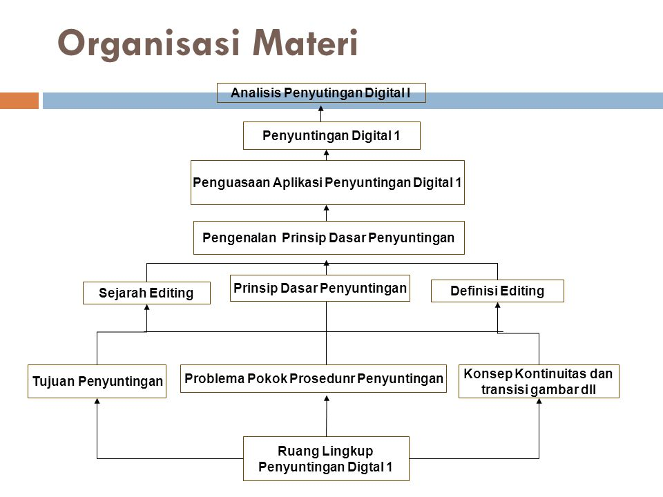 Organisasi Materi Analisis Penyutingan Digital I