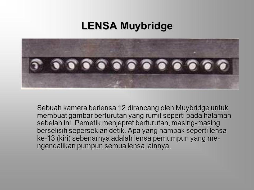 LENSA Muybridge