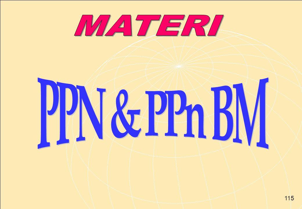 MATERI PPN & PPn BM
