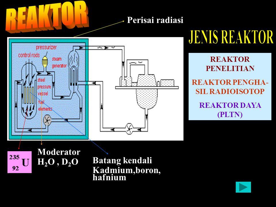 REAKTOR PENGHA-SIL RADIOISOTOP