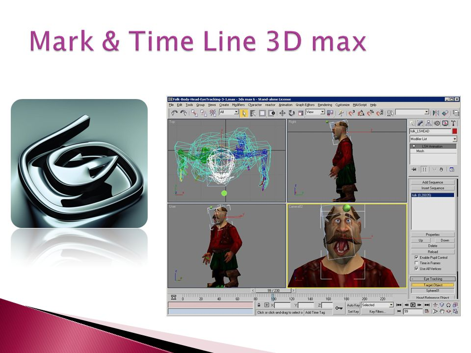 Mark & Time Line 3D max