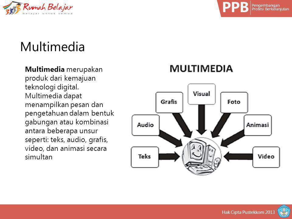 PPB Pengembangan. Profesi Berkelanjutan. Multimedia.